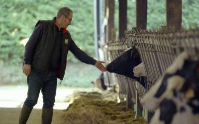 TENYÉSZTŐ – BODÓ ÁGOSTON Telephely: Ráckeresztúr  Tevékenység: Tejtermelés és tejfeldolgozás