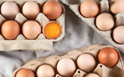 Baromfitermékek: Nem minden tojás egyforma!